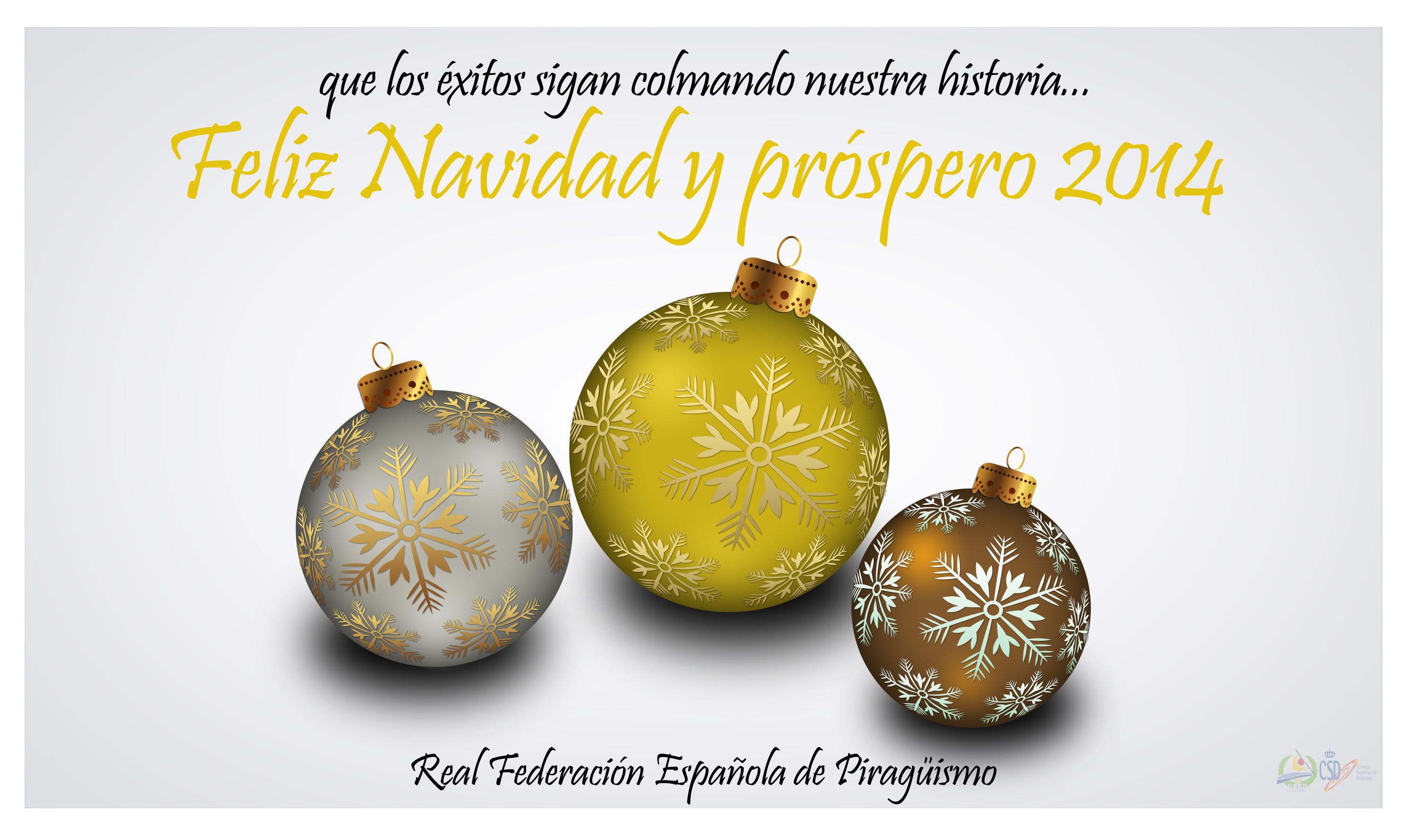 CHRISTMAS RFEP 2013