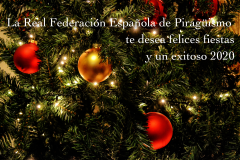 CHRISTMAS RFEP 2020