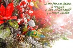 CHRISTMAS RFEP 2018
