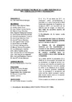 ACTA CONSULTAS ONLINE A JUNTA DIRECTIVA ENERO-17