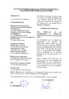 ACTA DE LA CONSULTA ONLINE A COMISIÓN DELEGADA DE 29 DE JUNIO 2016