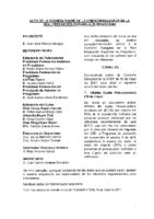 ACTA DE LA INFORMACIÓN REMITIDA A COMISIÓN DELEGADA DE 18 DE MAYO 2017
