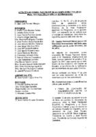 ACTA DE LAS CONSULTAS DE JUNTA DIRECTIVA DEL MES DE JULIO 2017