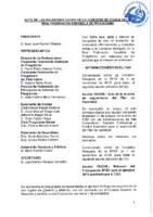 ACTA DE LAS CONSULTAS ONLINE A COMISIÓN DELEGADA DE LOS DIAS 6,7 Y 14 DE NOVIEMBRE 2018