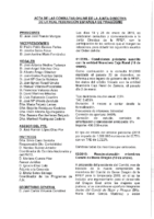 ACTA DE LAS CONSULTAS ONLINE A JUNTA DIRECTIVA DEL MES DE ENERO-19