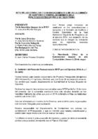 Acta Consultas Comisión Auditoría y Control Económica RFEP 31 DIC 2014