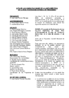 Acta y Anexos consultas e informaciones en línea a JD julio 20