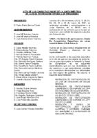 ACTA Y ANEXOS CONSULTAS ONLINE A JD FEB-MZO-21